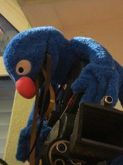 Kamera-Service:  Pelzig, Blau und Schlau